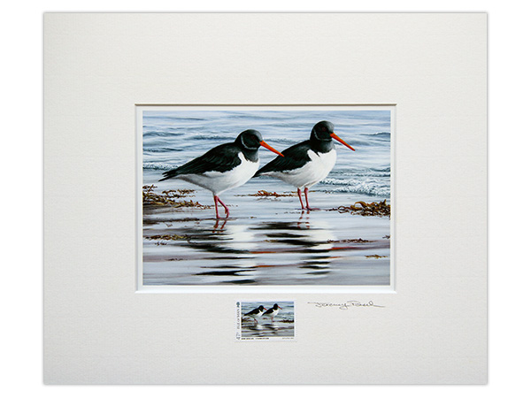 Coastal Birds of the Isle of Man by Jeremy Paul Stamped and Signed Prints