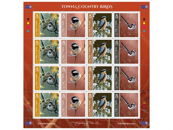 2 x Sheet Town & Country Birds First Class Stamps (32 stamps in total)