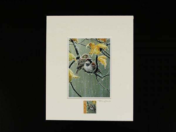 Jeremy Paul Town & Country Birds Signed House Sparrow Print