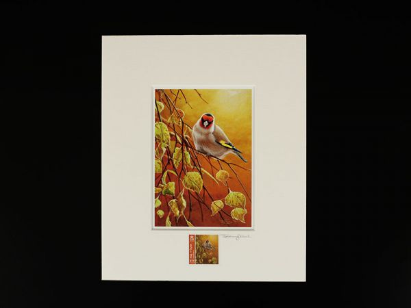 Jeremy Paul Town & Country Birds Signed  Goldfinch Print