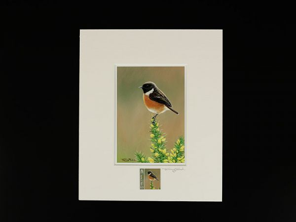 Jeremy Paul Town & Country Birds Signed Stonechat Print