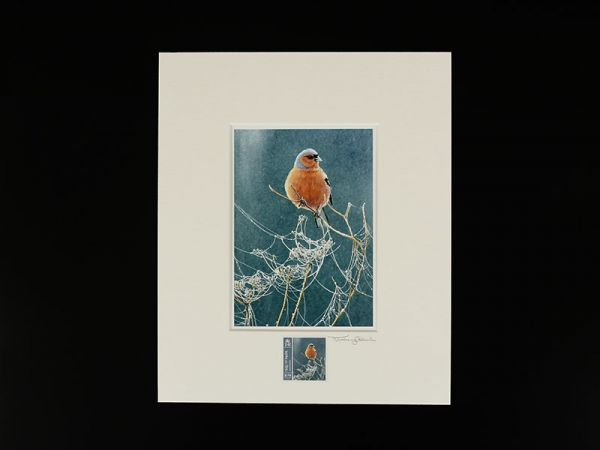 Jeremy Paul Town & Country Birds Signed Chaffinch Print