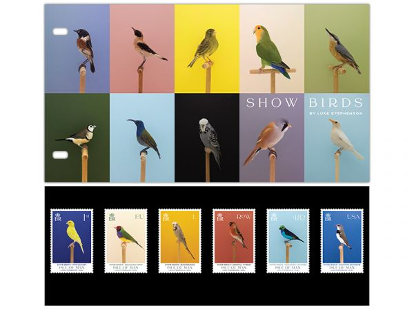 Show Birds Presentation Pack