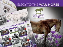 Elegy to the War Horse